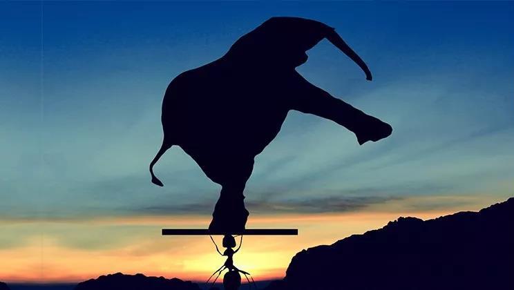 一文看懂如何把大象装进冰箱:A股借壳实战宝典